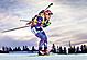Světový pohár v biatlonu, Nové Město na Moravě